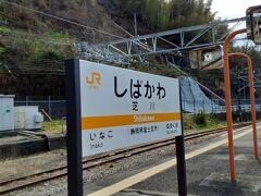 芝川駅で交換待ちです。(着くまでずっと静岡ではなく山梨だと思ってました。 確か新宿から芝桜行きがあるので) 芝川駅(特急通過駅) 156人