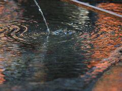 諏訪神社に到着。  紅葉が手水に映り込んでいます。