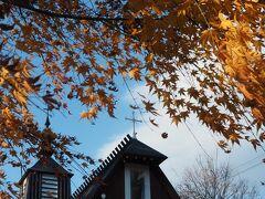 本日最後の目的地です。  青空と白い雲。 黄金色の葉を揺らす木々…