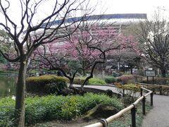 横浜スタジアムをバックに撮ります。