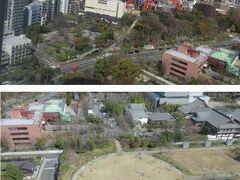 【プリンスパークタワー、眺望】 東京タワーの足元が見えます。 東京タワーの手前の森の中がとうふ屋うかい 上下の画像のどちらにも映っている赤茶色のレンガの建物は明徳幼稚園 グレーの屋根たちは増上寺会館 丸い広場がプリンス芝公園⇒ホテルの敷地内?誰でも入れます。朝は保育園児が一杯