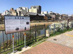 京都・東山エリア 京阪電車「清水五条」駅からすぐの五条大橋の 写真。  この時期、鴨川沿いには春の花が咲いています。  真っ白なユキヤナギも!  向こうに見える立派な建物は『料理旅館 鶴清』です。