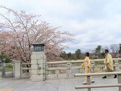 賀茂大橋   この辺りから植物園まで  歩いて30分足らずのようです