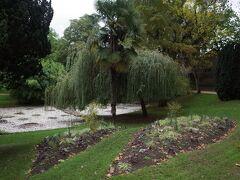様々な植物が植えられたおしゃれな公園。 癒されます。