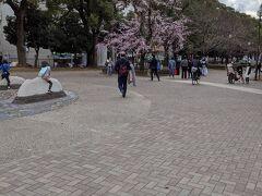 やっぱり、桜を見かけると撮って仕舞いますね。
