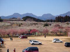★箕郷梅林★ 水沢から10分ほど走り箕郷梅林へ 駐車場に車を止め展望台からの眺め