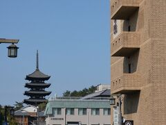 """私は昼食後に近鉄で奈良駅へ移動しました。 """"なら泉勇齋""""という試飲が出来る酒屋さんで""""風の森""""""""という微発泡の日本酒を購入しました。 ホテルは昔サンルートホテルと言ったところで、今はホテル尾花という名前です。 右の茶色の建物です。興福寺の五重の塔のすぐ近くです。"""