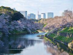 千代田区立九段坂公園からの眺め 満開のような...もう少しのような... でも十分きれい♪