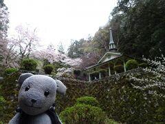 乙女峠のマリア聖堂周辺も早くも桜模様。