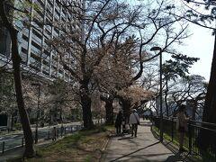 公園というより土手の上の遊歩道といった方がしっくり。