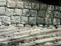 参道の石段を登っていきます。いい運動になると思います。