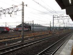 2021.03.06 稲沢 機関区が広がる稲沢にやってきた。貨物の合間に旅客列車を見ようという作戦だ。