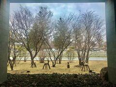 今日のお宿は軽井沢のハーヴェスト。