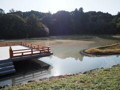 勾玉の形をしているという「勾玉池」、ここからだと池全体の形状わからんな。 6月花菖蒲が咲き乱れる頃が良いそうです。