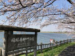 小貝川沿いの、岡堰水神岬公園に到着。 ここは、取手市のホームページに桜スポットとして紹介されています。