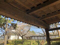 この横木、「かぶきー冠木」っていうらしいんですが、これが立派で。  こういうのを見ると日本建築っていいよなぁ、こんな重量のありそうな材木、上に組んだ瓦屋根の櫓を支える技術って凄いよなぁと思います。