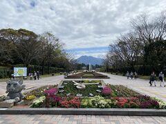 吉野公園の駐車場にとめて園内へ  ベルサイユ宮殿みたいな作りやん !! (行ったことないけど)  花壇や噴水の向こう正面に桜島  ガツーンとくるいい風景です  まさに借景の極み