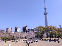 12:25 隅田公園 思い思いにシートやテントで過ごすご近所の人、思った以上に人出