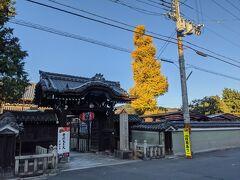 禅居庵のイチョウが見事でした。