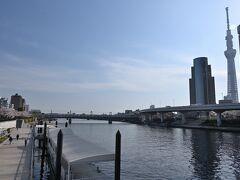 ●吾妻橋  今回訪れる「隅田公園」は隅田川を挟んだ両岸にあり、まずは左岸側(東側)へと向かうべく、「吾妻橋」を渡っていきます。 お、昨年の9月に訪れたばかりの「東京スカイツリー」も見えますね~。