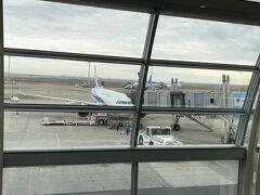 羽田に到着。ここで相方様と合流し、NH623便で鹿児島へと向かいます。 なぜか写真が残っていませんでした。