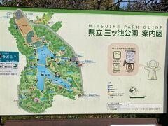 「神奈川県立三ツ池公園」。 いつもはバスで来ることが多いのですが、今回は家から自転車でやって来ました。  四季折々に季節の花々が楽しめる公園ですが、78品種・およそ1600本あるというサクラが楽しめる神奈川県でも有数のお花見スポットです。 「さくら名所100選」にも選ばれています。