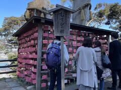 根本から二つに分かれている御神木の大銀杏ですが、台風の影響からか、途中から切られていました。