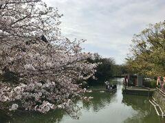 柳河藩として繁栄した柳川は、藩主・立花氏が入城した柳川城を中心とする城下町。縦横に巡らされた掘割は、今では舟で水上を進む「川下り」として有名になっている。  右に見える建物は、船に乗りながら買い物ができる水上売店。