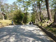 ご本殿へ向かう通り道は、坂道になっていて珍しいようです。 本殿へ向かう坂道は下り坂なので楽です。 神門通りからの道路や本殿に向かうが道は、石造りのになっています。