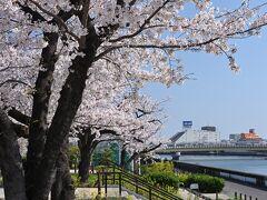 隅田公園(浅草側)