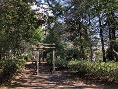 公園の先、遊びの森。フィールドアスレチックです。
