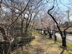 公園の端にある御嶽山神社の前から。川に沿って細長い公園です。