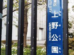 谷中霊園から南へ走り、言問通りを横切って直進すると上野公園へ続く一本道となります。一方通行が終わる交差点の向こう左右が芸大です。12は勿論左側、音楽学部