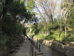 多摩川水系の一級河川である谷沢川に沿って約1kmにわたり遊歩道が続きます