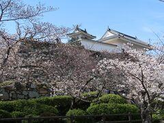 1<浜松城と桜> 美術館のある場所は、浜松城公園の一角。 市役所駐車場に車を入れ、ついでに浜松城と桜を見に。ここは、ソメイヨシノを中心に枝垂れ桜、山桜など、約360本の桜が咲く浜松有数の桜の名所です。桜は6分咲きといったところ。 城と桜って合いますねぇ。