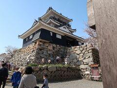 4<浜松城天守閣> 天守閣の石垣も400年ほど前のもの。野戦城らしく粗削りの岩で頑丈に造られています。天守閣は、昭和33年に再建されたもの。 家康の頃は天守閣はなく、家康が江戸に移った後、浜松城主となった秀吉の家臣「堀尾吉晴」(後の松江城主)が築城したものです。