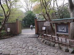 43<浜松城公園 日本庭園> 美術館を後にして、近くにある日本庭園に向かいました。 こっちの桜はどうだろう・・・。
