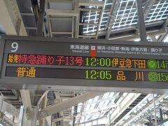東京駅12時00分発の「踊り子13号」で出発です。