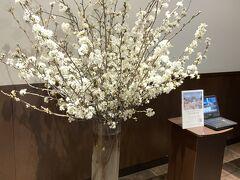 2021年3月27日  関東地方では桜が満開。  緊急事態宣言も解除された。  予定してた通り沖縄へ行くさ~。