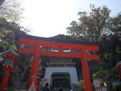 お腹もいっぱいになったところで、歩くぞ!! 江島神社さん、お久しぶりです。