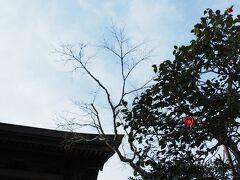 海蔵寺に到着 臨済宗建長寺派の寺院で1394年建立という名刹ですが・・・
