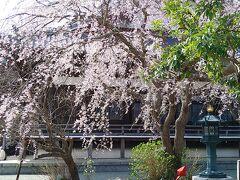 最後に我が家のお墓がある本覚寺をお参りして帰路につきます。