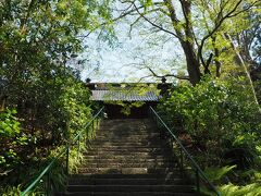 緑の山に抱かれるように建つ妙本寺。自然いっぱいの参道、静かな境内が好きでお散歩コースのひとつにもなっています。