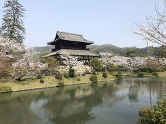吉香神社の前を通って駐車場へ戻ります。 この建物は錦雲閣。吉香神社内にある絵馬堂だそうです。お堀と桜と、錦雲閣、風情があってキレイですね。