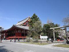 ●浅草寺  ということで、「隅田公園」から東参道を通り、「浅草寺」の境内へと移動してきました。 特に近年はいつも観光客でごったがえしているイメージがあり、しばらく足が遠のいてましたが、せっかく浅草まで来たのでサクッとお参りしていくことに。