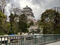 生憎の空模様だけど雨は降っておらず。 小田原駅からホテルに向かう途中に見えた小田原城を車窓からパチリ☆ 桜も見頃を迎えていました。