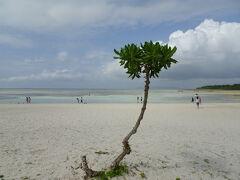 竹富島といえばのコンドイビーチ( ≧∀≦)ノ