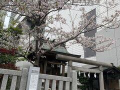 第六天社です。 桜も咲いています。