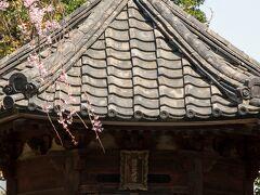 影向堂で御朱印をもらってから、六角堂へ。 横にある枝垂れ桜がとても綺麗で、コラボで撮ろうと頑張りましたが、桜がちょこっとになってしまいました。