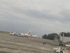 奄美空港に着きました。 ハイビスカス柄の飛行機可愛い。  本日3レグ終了。まだ乗れる、ホッピングツアー行けるかも!検討してみよう。